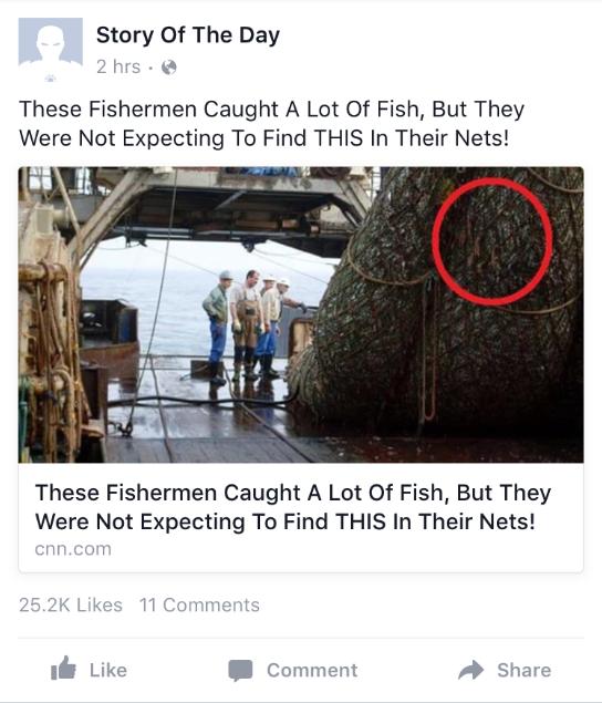 FB stupid post